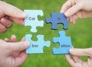 peers collaboration training & development learning